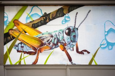 Portland_Community_Exterior_Mural_21